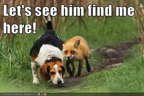Let's see him find me here!