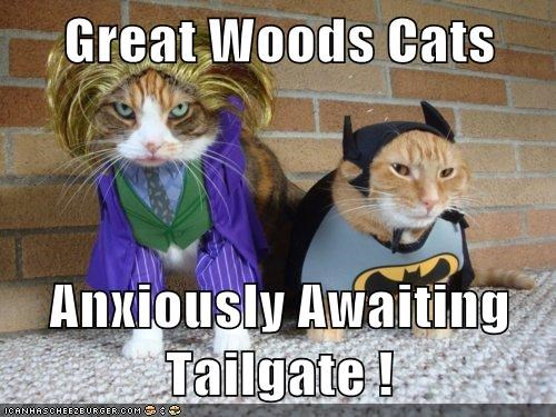 Great Woods Cats  Anxiously Awaiting Tailgate !