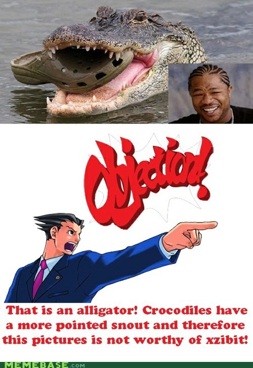 You Merely Put a Croc in My Gator