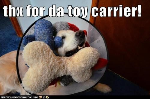 Toy Carrier