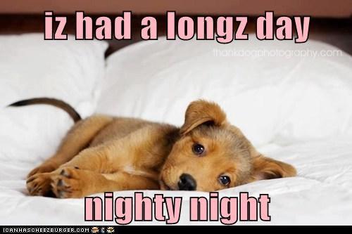 iz had a longz day  nighty night