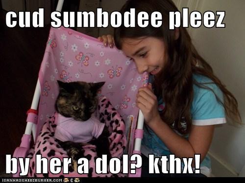 cud sumbodee pleez  by her a dol? kthx!