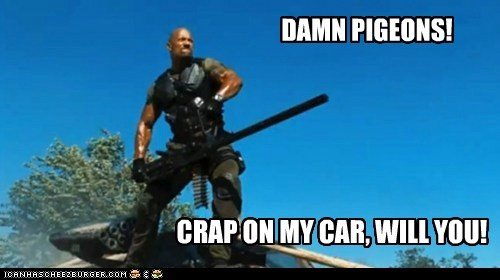car,crap,dwayne johnson,g-i-joe,gun,pigeons,tank,the rock