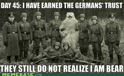 bear,Germany,Memes,trust