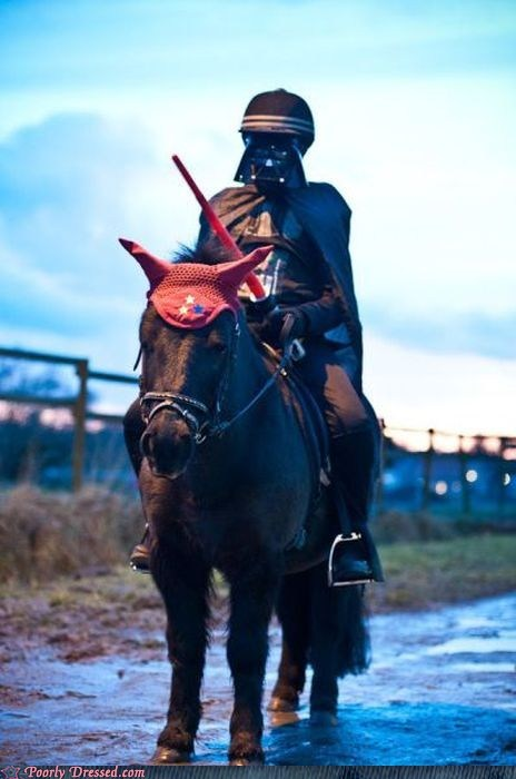 Darth Burro Patrols the Border