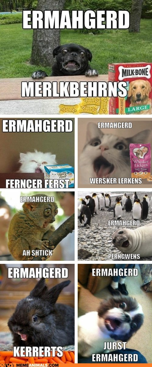 Ermahgerd! Erll the Ernuhmurls!