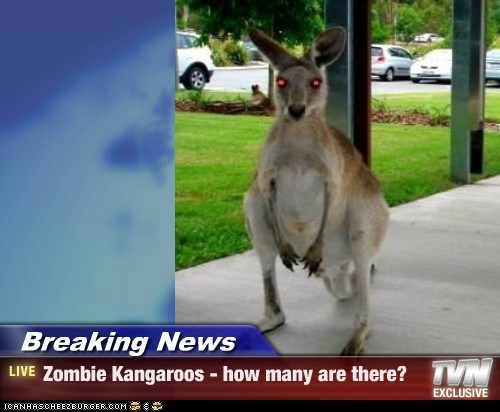 how many zombie kangaroos are there?