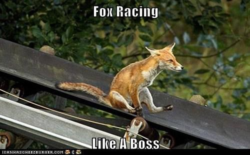 Fox Racing  Like A Boss