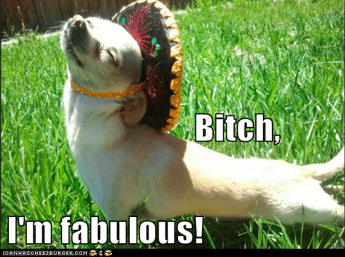 Bitch, I'm fabulous!
