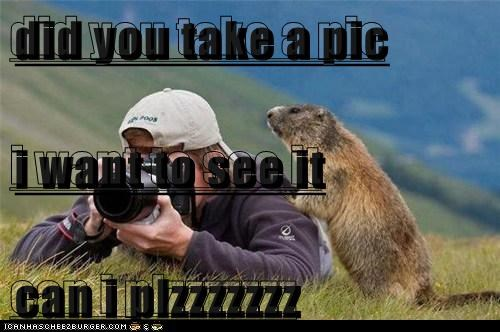 did you take a pic i want to see it can i plzzzzzzz