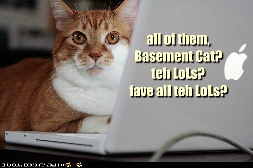 all of them, Basement Cat? teh LoLs?  fave all teh LoLs?