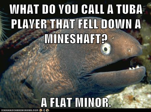 Animal Memes: Bad Joke Eel - He Was Underage Too?