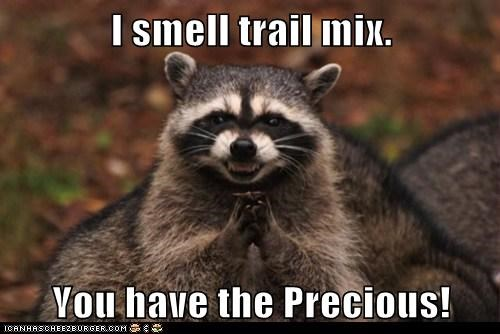 food,gollum,Lord of the Rings,Precious,raccoon,smell,trail mix