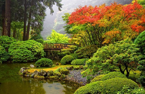 bridge,garden,japanese,lake,oregon