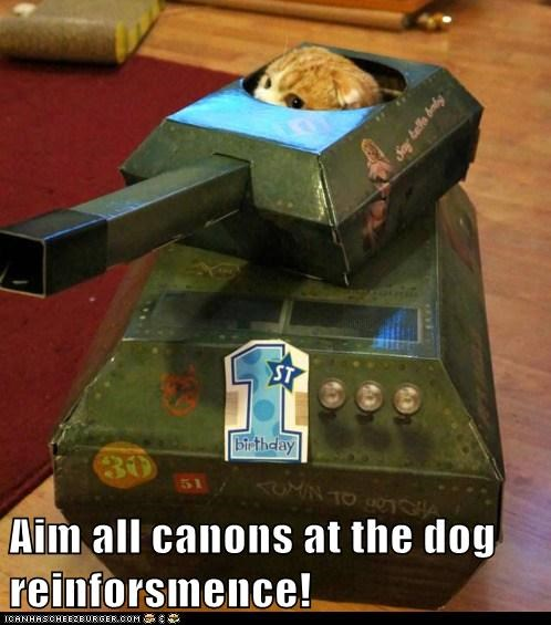 Aim all canons at the dog reinforsmence!