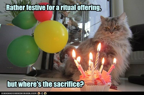 birthday,cake,candles,confused,festive,offering,sacrifice