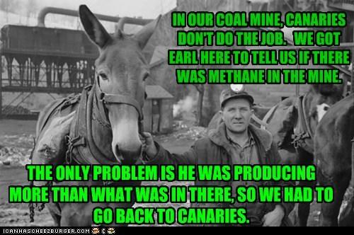ass,canaries,donkey,farts,methane,mine