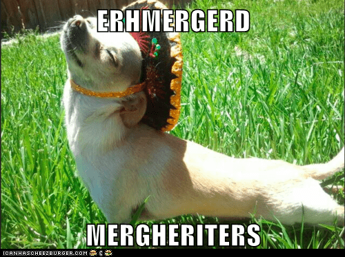 ERHMERGERD  MERGHERITERS