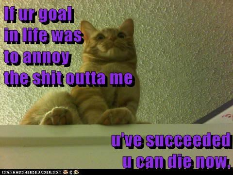 If ur goal                                                         in life was                                                                                to annoy                                                          the shit outta me  u've succeed