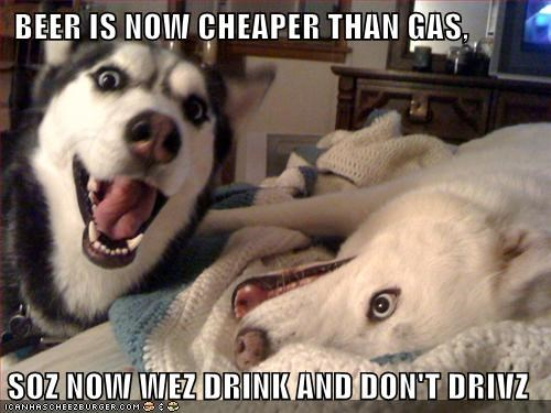 BEER IS NOW CHEAPER THAN GAS,  SOZ NOW WEZ DRINK AND DON'T DRIVZ