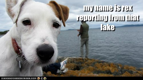 my name is rex  reporting from that  lake