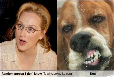 Random person I don' know Totally Looks Like Dog