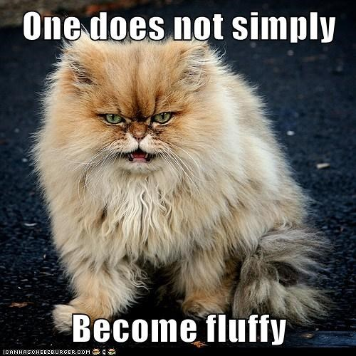 One does not simply  Become fluffy