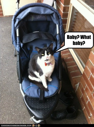 What baby?