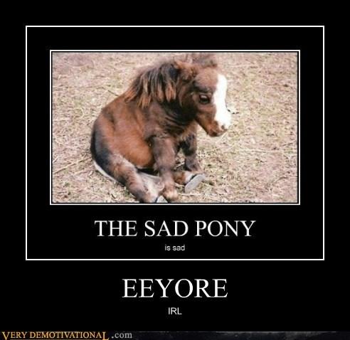 baby,eeyore,hilarious,horse,IRL