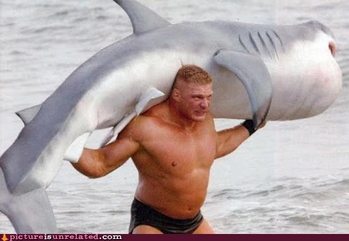 Have You Ever Been So Angry That You Lifted a Shark?