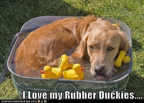 I Love my Rubber Duckies....