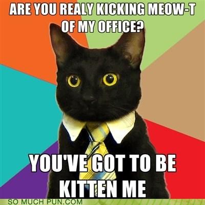 Business Cat,Hall of Fame,kidding,kitten,letter,me,meme,meow,out,similar sounding,t
