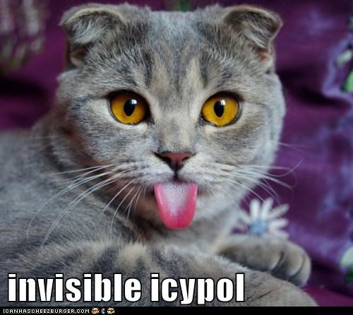 invisible icypol