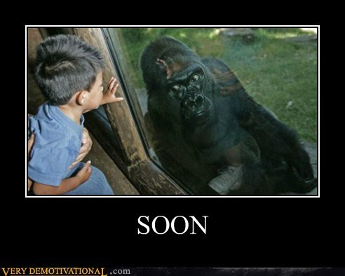 ape,gorilla,hilarious,kid,SOON
