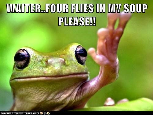 flies,four,frog,moar,restaurant,soup,unhappy