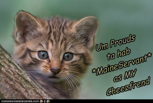 Um Prouds  ta hab *MaineServant* as MY Cheezfrend