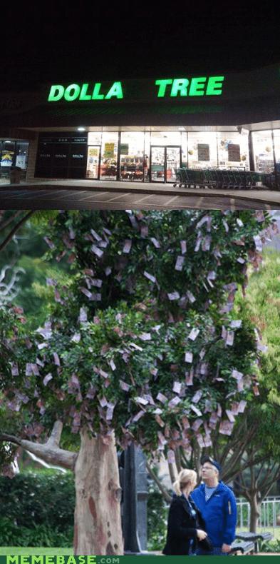 dollar tree,Memes,money,store,tree