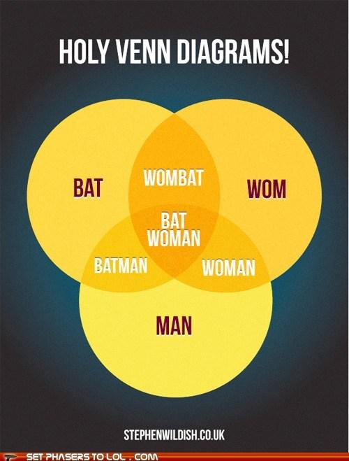 bat,batman,batwoman,charts,graphs,infographic,man,venn diagrams