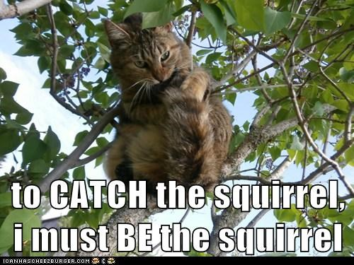 to CATCH the squirrel, i must BE the squirrel