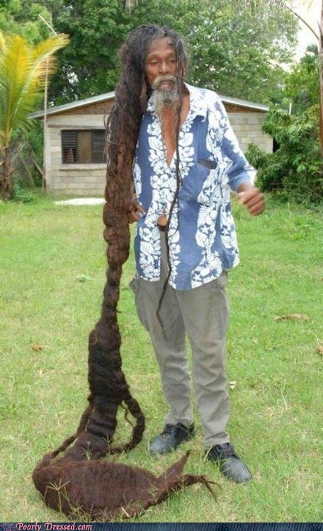 dreads,hair,rasta,woah