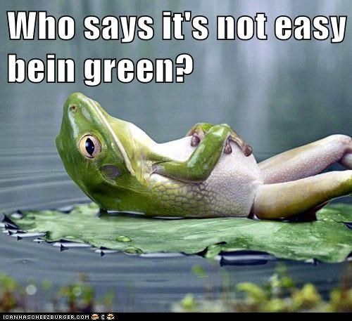 best of the week,captions,frog,green,Hall of Fame,its-not-easy-being-green,laying,relaxed,who says