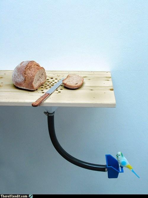 bird,bird feeder,bread,breadcrumbs,cutting board,Hall of Fame,kitchen