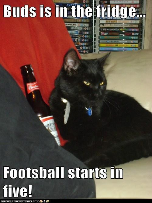 Buds is in the fridge...  Footsball starts in five!
