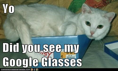 Yo  Did you see my Google Glasses
