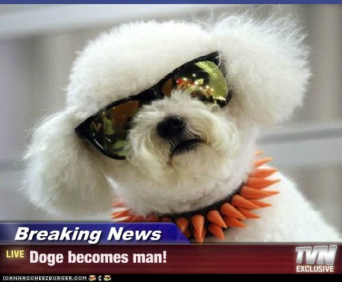 Breaking News - Doge becomes man!