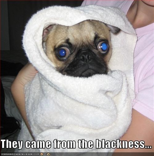 They came from the blackness...