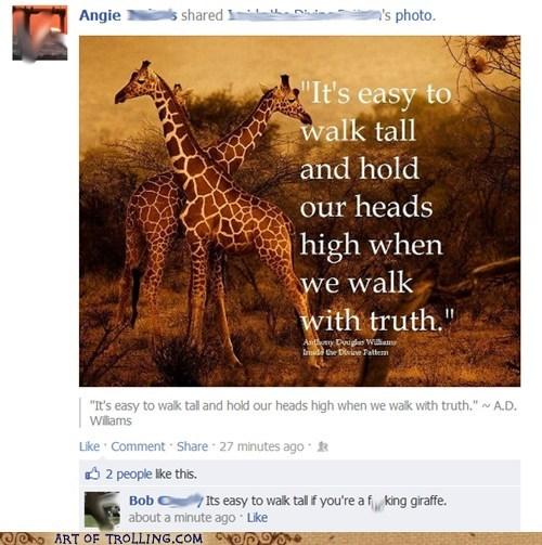 facebook,giraffes,truth,walk tall