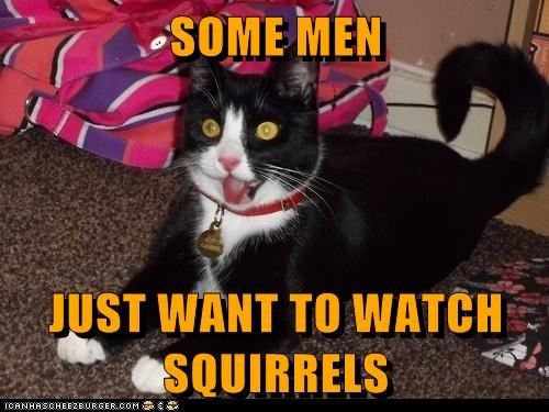 add,adhd,burn,chaos,crazy,some men just want to wat,some men just want to watch the world burn,squirrel