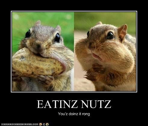 EATINZ NUTZ