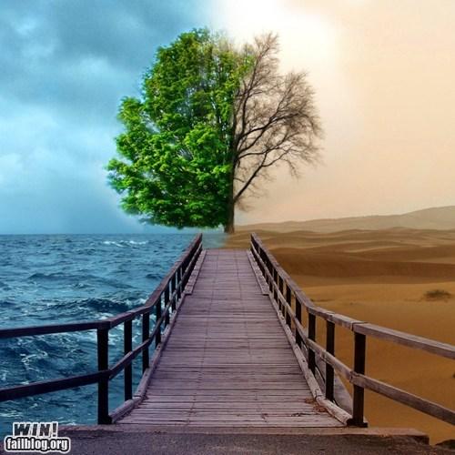 Bipolar Nature